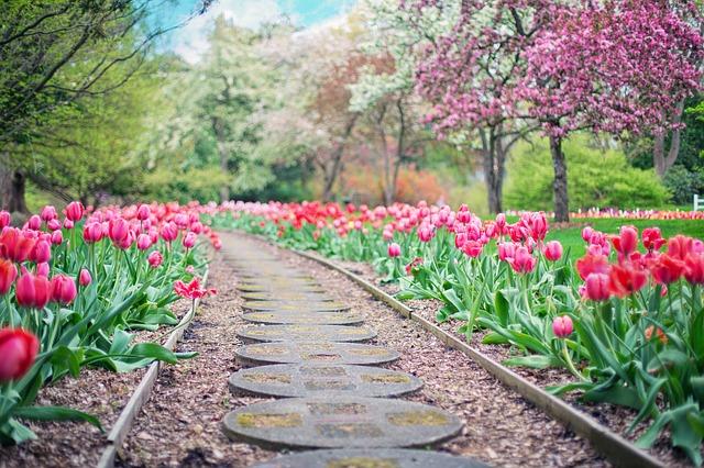 Co všechno se dá udělat se zahradou